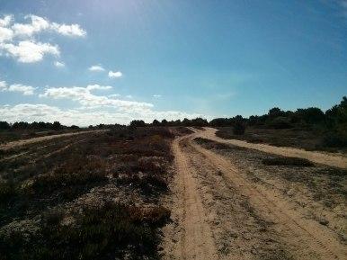 Une route de sable...