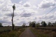 Magnifique petite route tout juste avant Pleiku